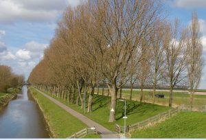 Stelling van Amsterdam: Zuidwestfront