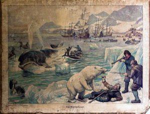 'Een land druipende van walvisch traan'