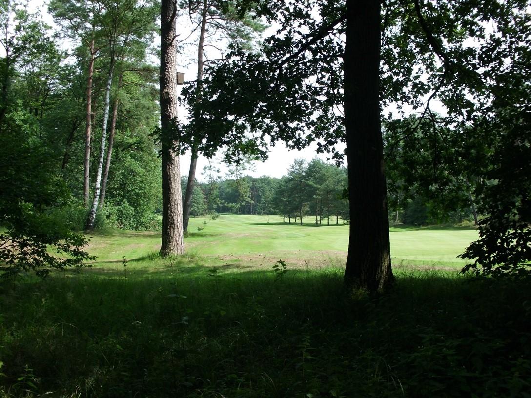 Golfbaan, Stuifuindenlandschap,