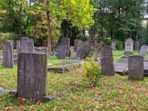 Oude Begraafplaats Naarden zit vol leven