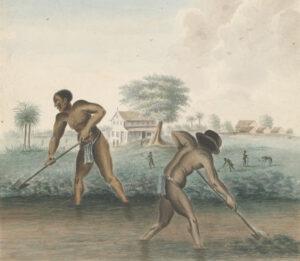 'Slaven zijn kippen' en andere verhalen over de slavernij