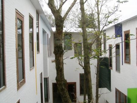 De bomen in het gebouw.