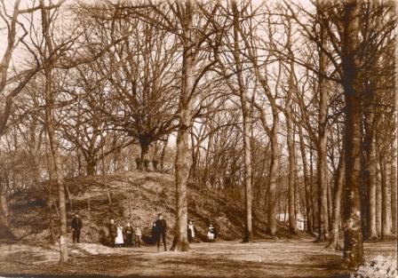 De Kattenberg omstreeks 1900 vanuit het Heilooërbos bezien.