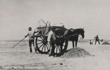 Schelpenvissers aan het werk op het Strand van Egmond aan Zee. Ansichtkaart.