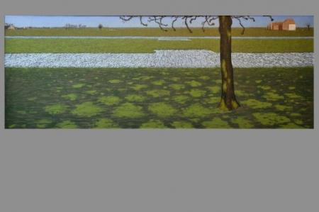 Witte vogels in de verte, door Jan Kees Vergouw, 1978.
