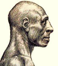 Realistische weergave van een Neanderthaler.