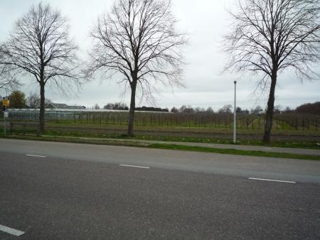 Terrein van Vredenburg in 2012