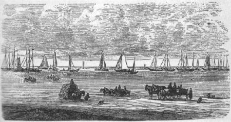 De vloot van Huizer botters die elke maandagmorgen uitvoer.
