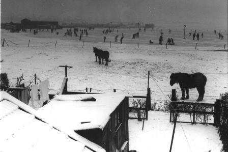 De ijsbaan gezien vanuit de woning van de familie Ackermann in het Ooievaarsnest in de jaren zestig.