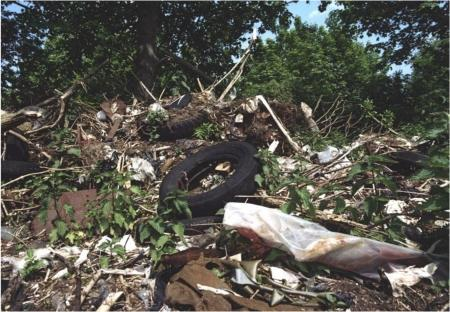 Na sluiting van de stort blijft de Volgermeerpolder nog jaren lang een vuilnisbos.