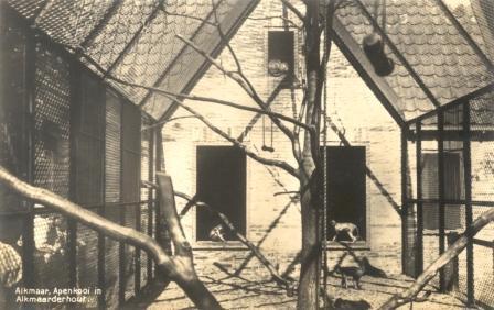 De apenkooi van binnen, omstreeks 1940.