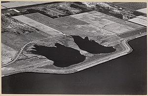 Wieringermeer, IJsselmeerdijk, augustus 1950.