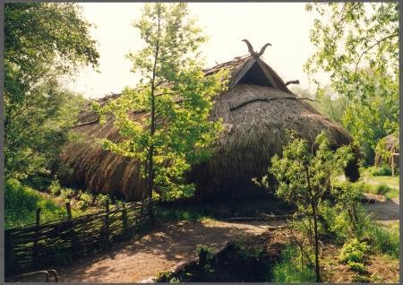 De bronstijdboerderij in het Buitenmuseum.