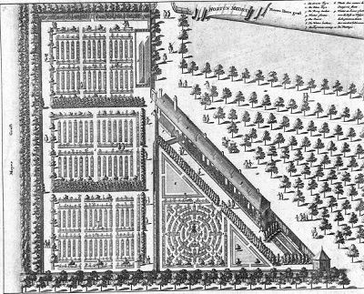Plattegrond van de Hortus Medicus te Amsterdam.