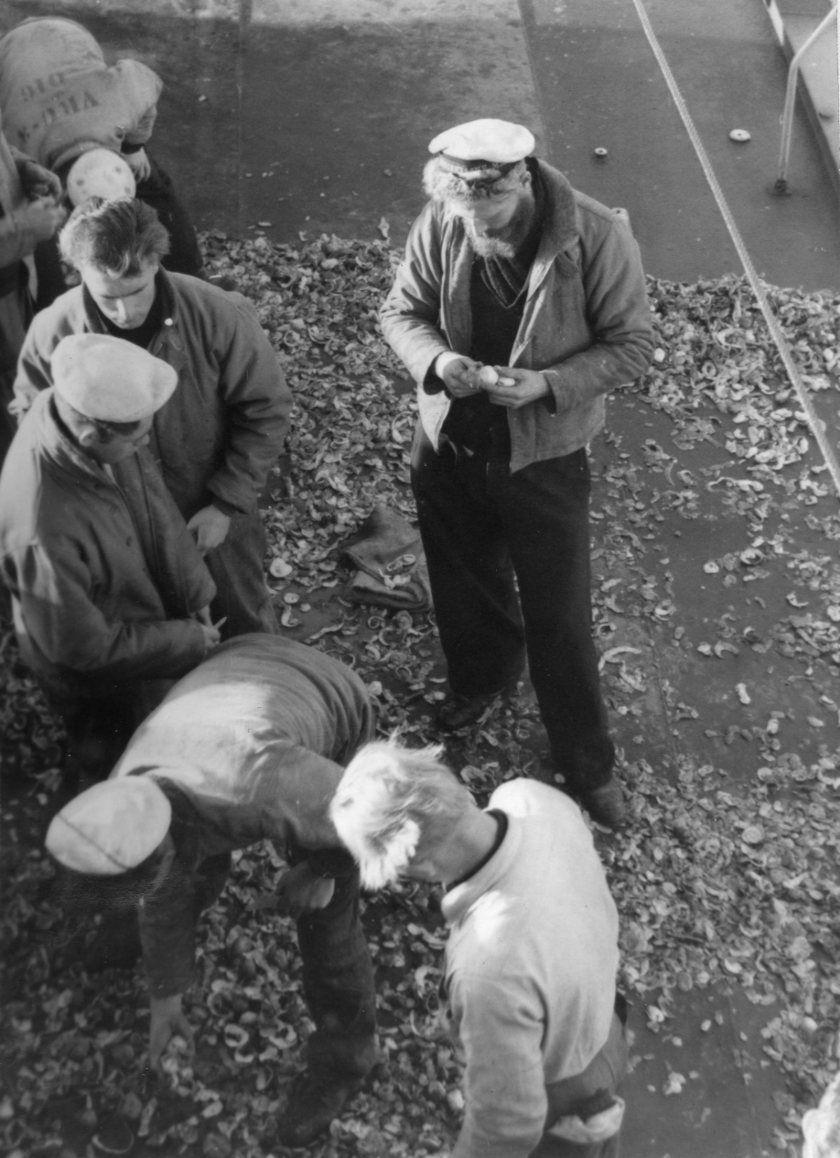 Piepers jassen aan boord van de Hr.Ms. Piet Hein (1952)