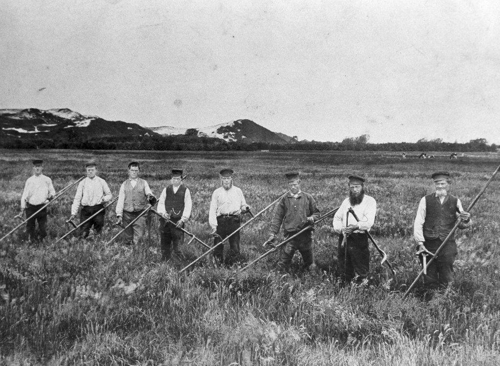 Klaas Min en zijn zeven zonen tijdens het 'koppiestik', de pauze tijdens het hooien.