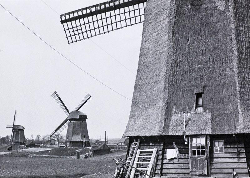 Historische foto van molens aan de Noordervaart