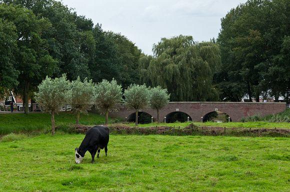 Noorderbrug Edam.