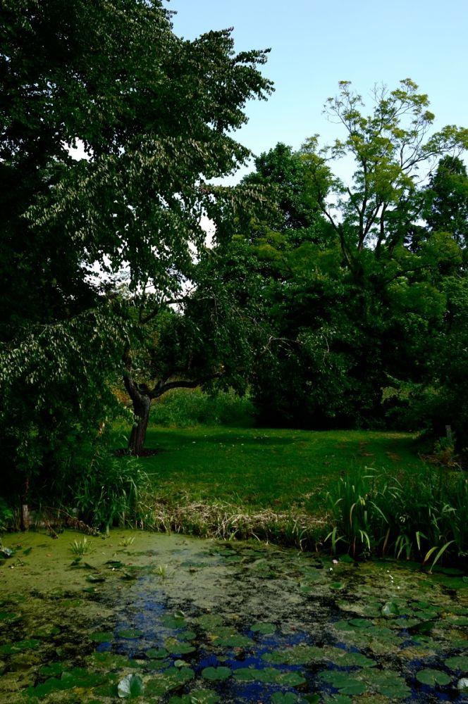 Tuin van Bram