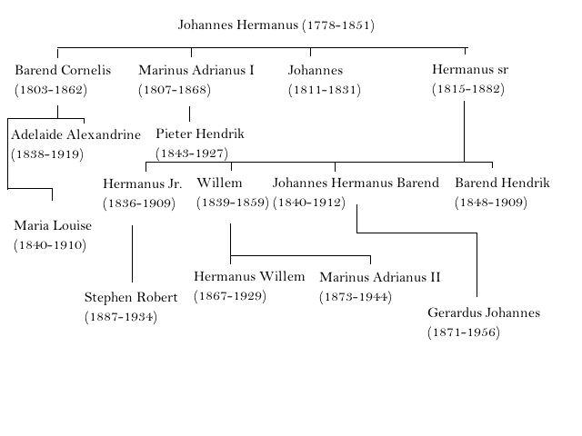 Stamboom Familie Koekkoek
