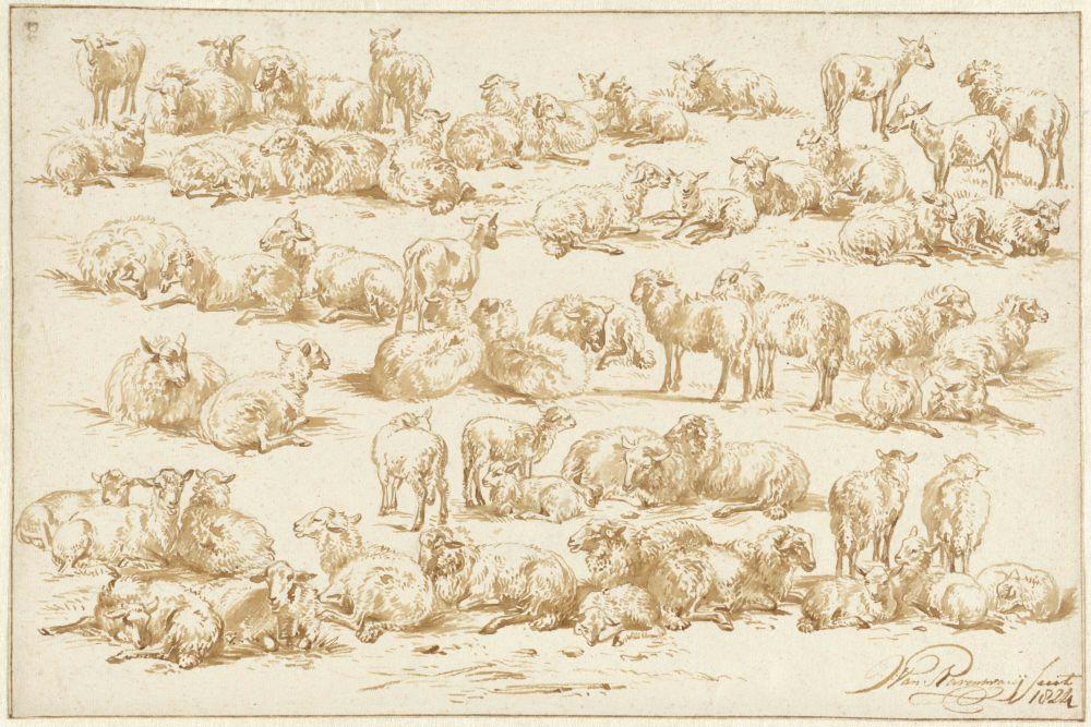 Studies van Schapen, Jan van Ravenswaay, 1824