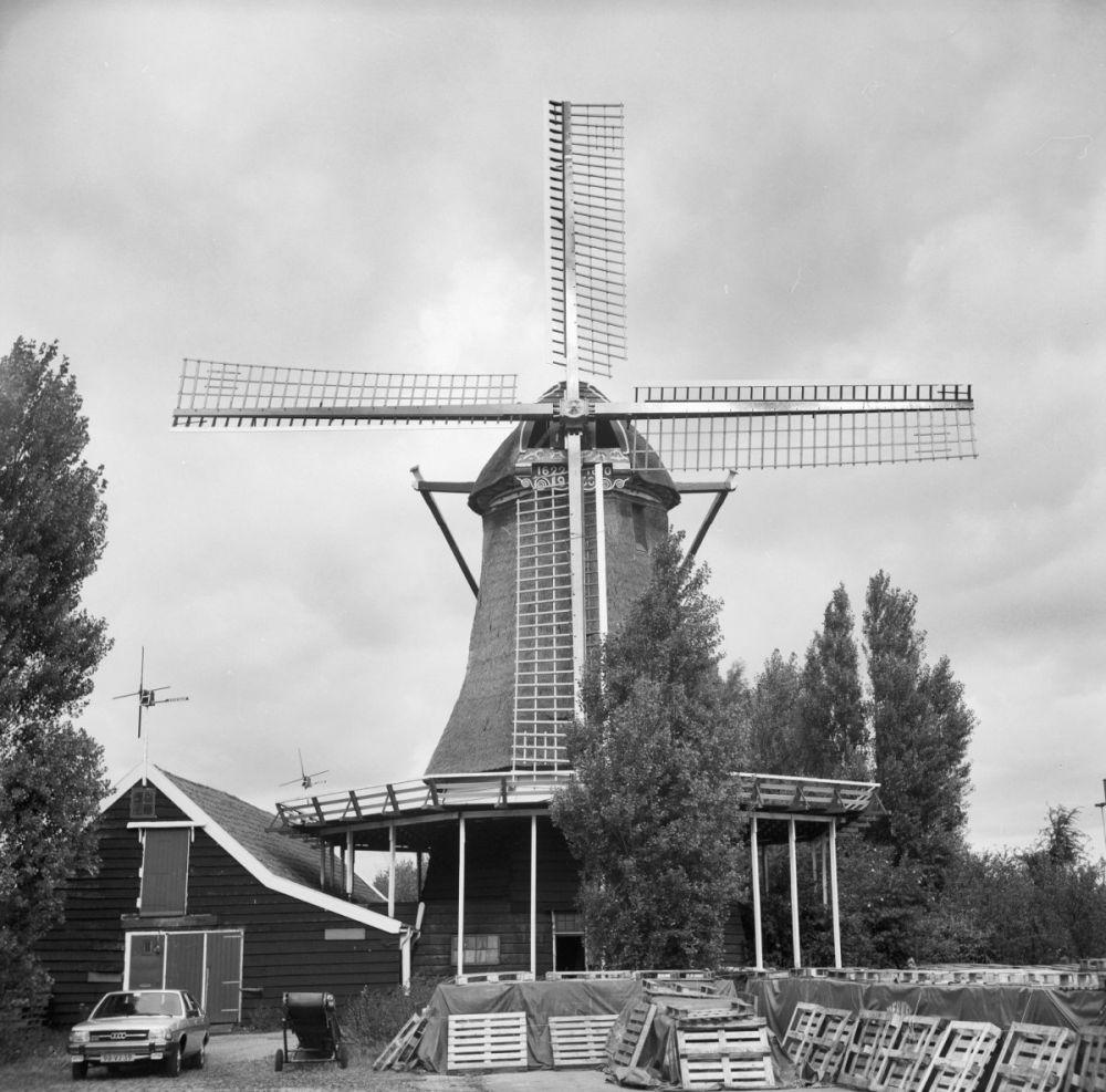 Oliemolen De Ooievaar in 1978