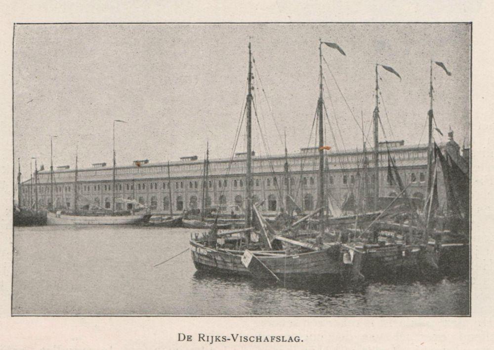 De Rijks Visafslag in IJmuiden in 1901