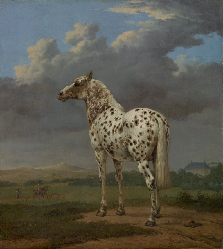 The Piebald Horse door Paulus Potter