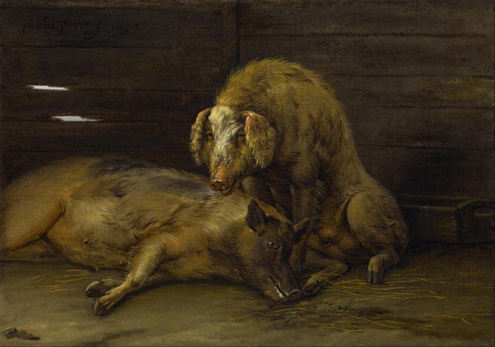Twee varkens in een stal, door Paulus Potter
