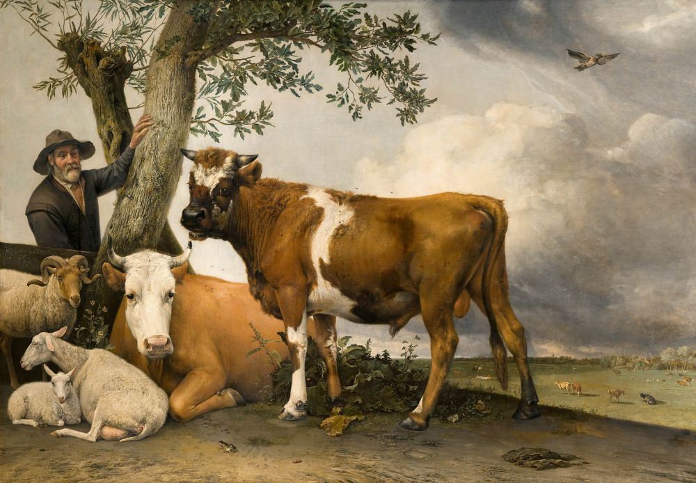 De Stier, door Paulus Potter