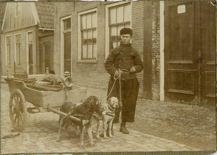Hondenkar 1900.