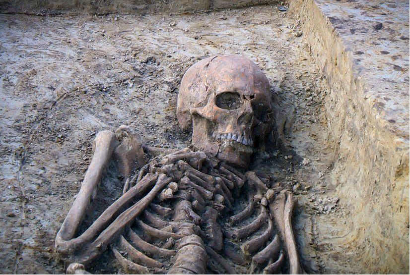 Skelet van Drechtje