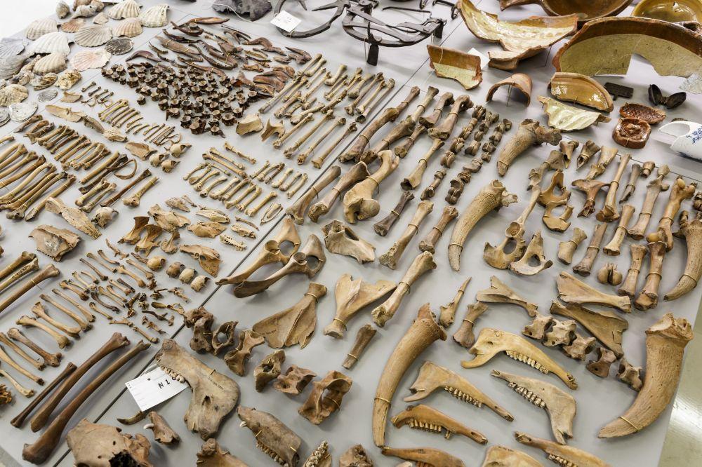 Archeologische vondsten Noord/Zuidlijn