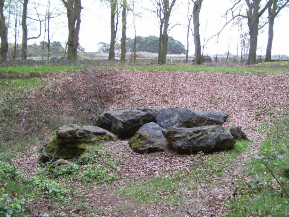 Het gesteente in het Bikbergerbos.