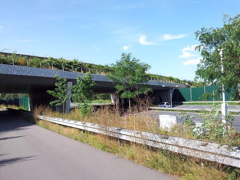 Natuurbrug Laarderhoogt gezien vanaf de autosnelweg A1.