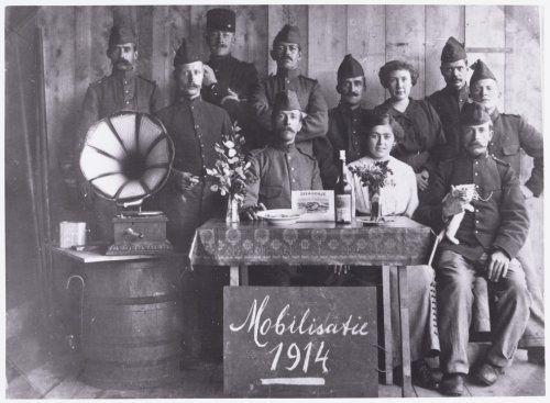 De mobilisatie van 1914