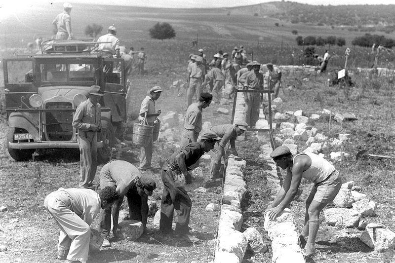 Impressie van het werken in een kibboets in Israël (Kibboets Alonim)