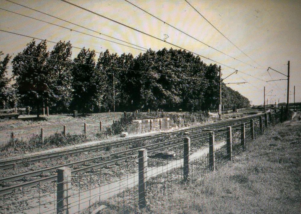 Foto van de spoorlijn 1984. Beeld: Museum Kennemerland