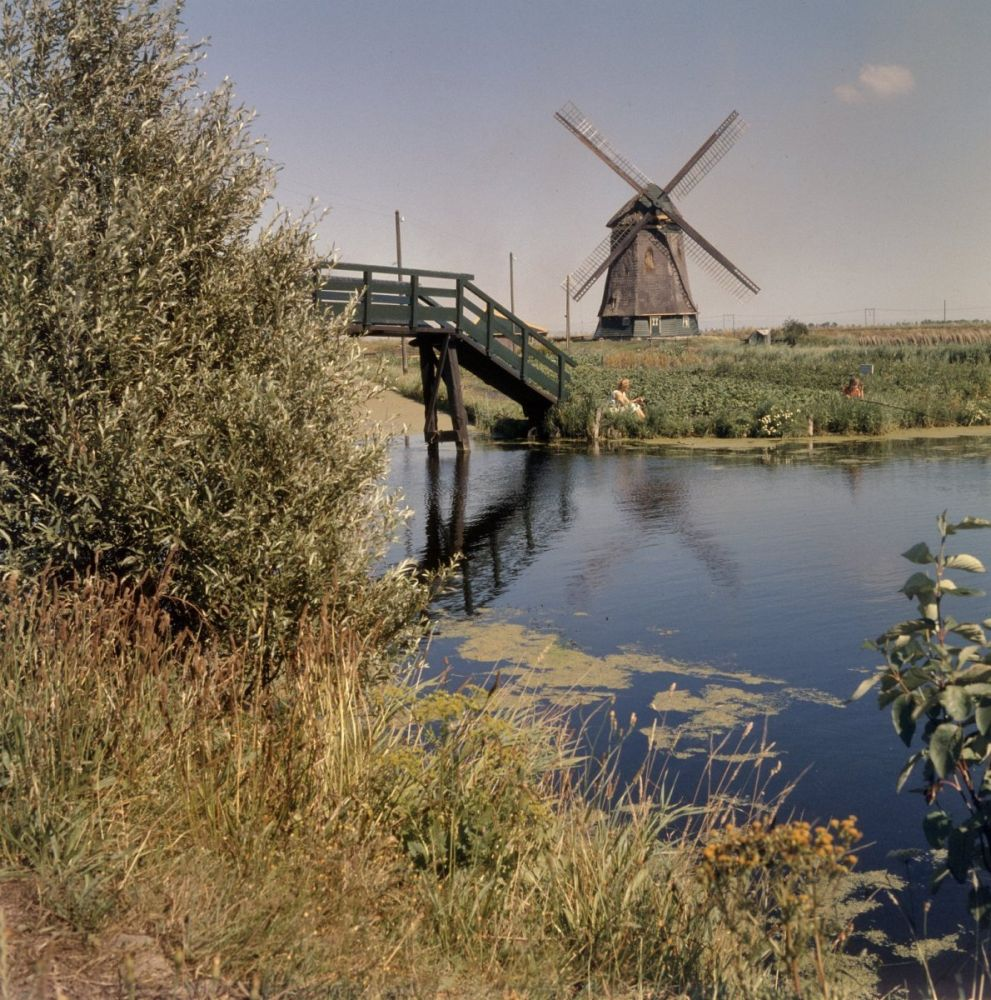 De molen bij Sint Pancras, met de spoorlijn op de achtergrond.